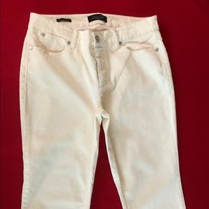 New TALBOTS JEANS Women's